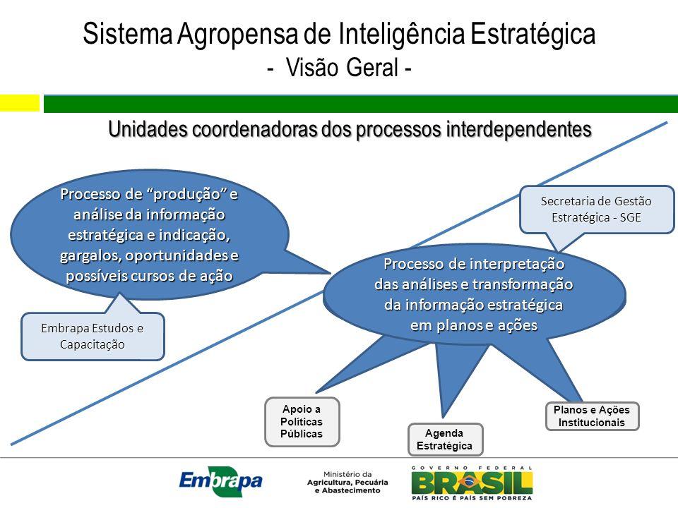 Sistema Agropensa de Inteligência Estratégica - Visão Geral - Processo de produção e análise da informação estratégica e indicação, gargalos, oportuni