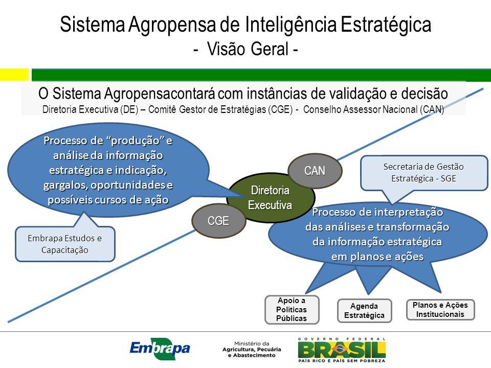 Sistema Agropensa de Inteligência Estratégica - Visão Geral - Processo de interpretação e uso da informação estratégica Processo de interpretação das