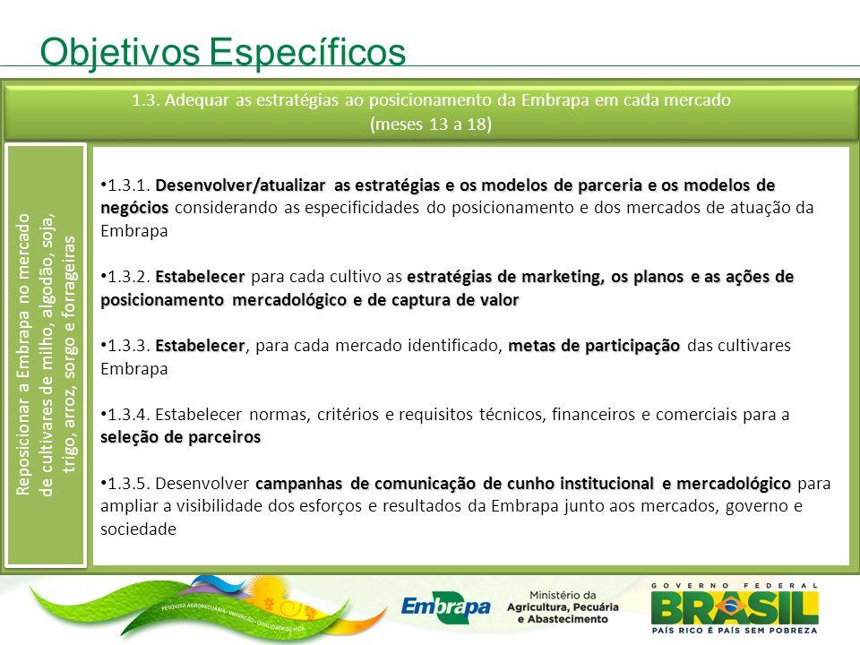Objetivos Específicos Desenvolver/atualizar as estratégias e os modelos de parceria e os modelos de negócios 1.3.1. Desenvolver/atualizar as estratégi
