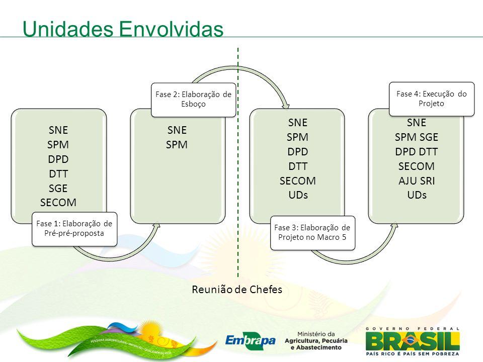 Unidades Envolvidas Fase 1: Elaboração de Pré-pré-proposta Fase 2: Elaboração de Esboço Fase 3: Elaboração de Projeto no Macro 5 Fase 4: Execução do P