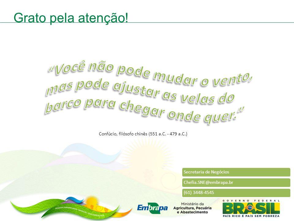 Secretaria de NegóciosChefia.SNE@embrapa.br(61) 3448-4545 Grato pela atenção.