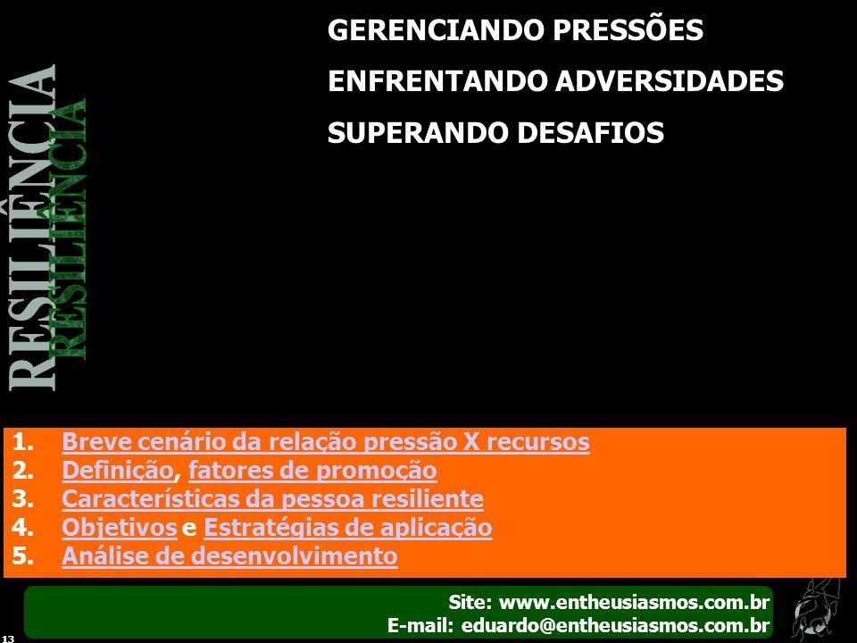 Site: www.entheusiasmos.com.br E-mail: eduardo@entheusiasmos.com.br 13 GERENCIANDO PRESSÕES ENFRENTANDO ADVERSIDADES SUPERANDO DESAFIOS 1.Breve cenári