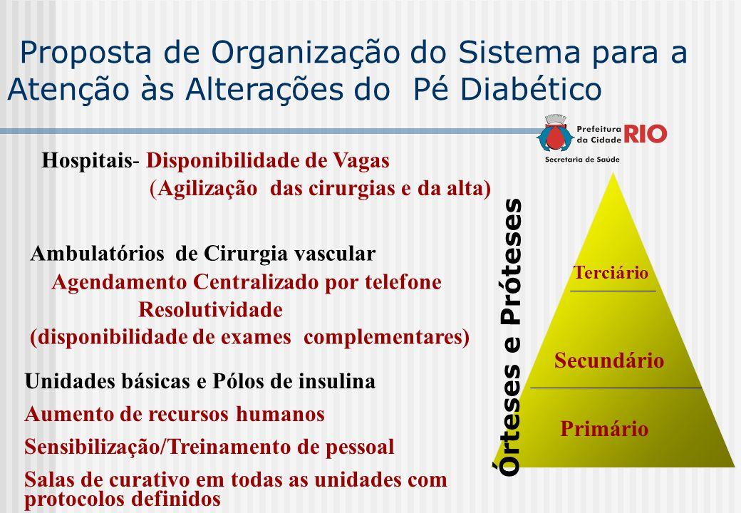 Proposta de Organização do Sistema para a Atenção às Alterações do Pé Diabético Primário Secundário Terciário Unidades básicas e Pólos de insulina Aum