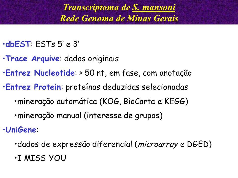 dbEST: ESTs 5 e 3 Trace Arquive: dados originais Entrez Nucleotide: > 50 nt, em fase, com anotação Entrez Protein: proteínas deduzidas selecionadas mi