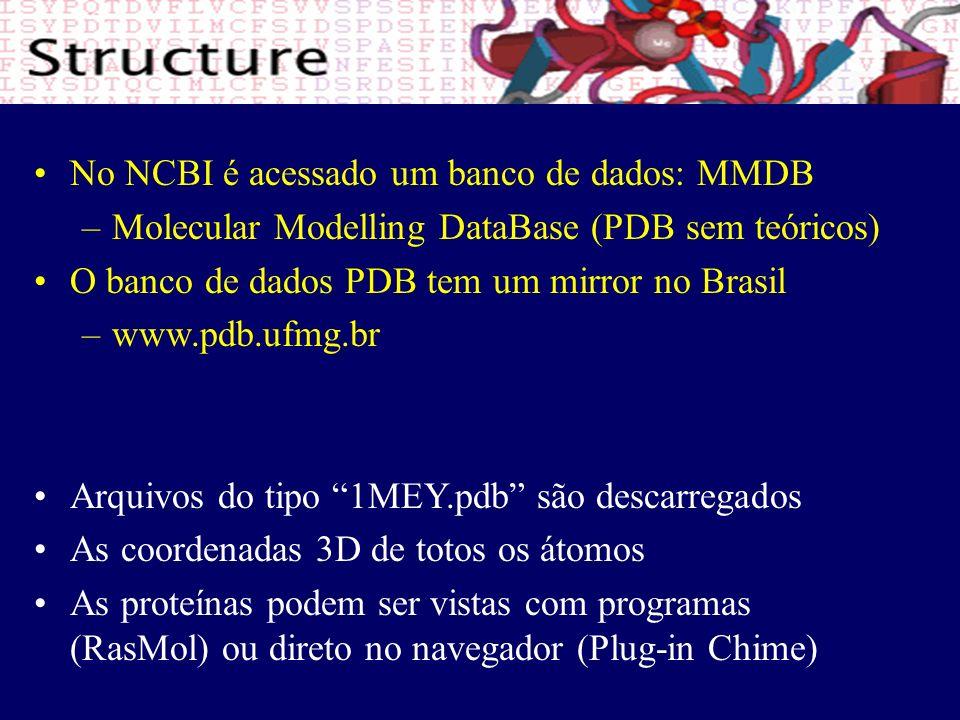 No NCBI é acessado um banco de dados: MMDB – –Molecular Modelling DataBase (PDB sem teóricos) O banco de dados PDB tem um mirror no Brasil – –www.pdb.