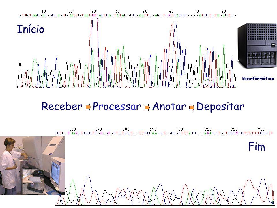 Início Fim Receber Processar Anotar Depositar Bioinformática