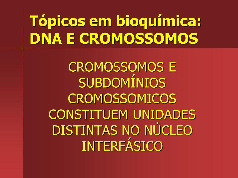 Tópicos em bioquímica: DNA E CROMOSSOMOS CROMOSSOMOS E SUBDOMÍNIOS CROMOSSOMICOS CONSTITUEM UNIDADES DISTINTAS NO NÚCLEO INTERFÁSICO