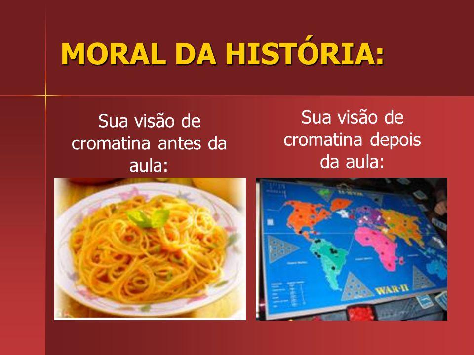 MORAL DA HISTÓRIA: Sua visão de cromatina antes da aula: Sua visão de cromatina depois da aula: