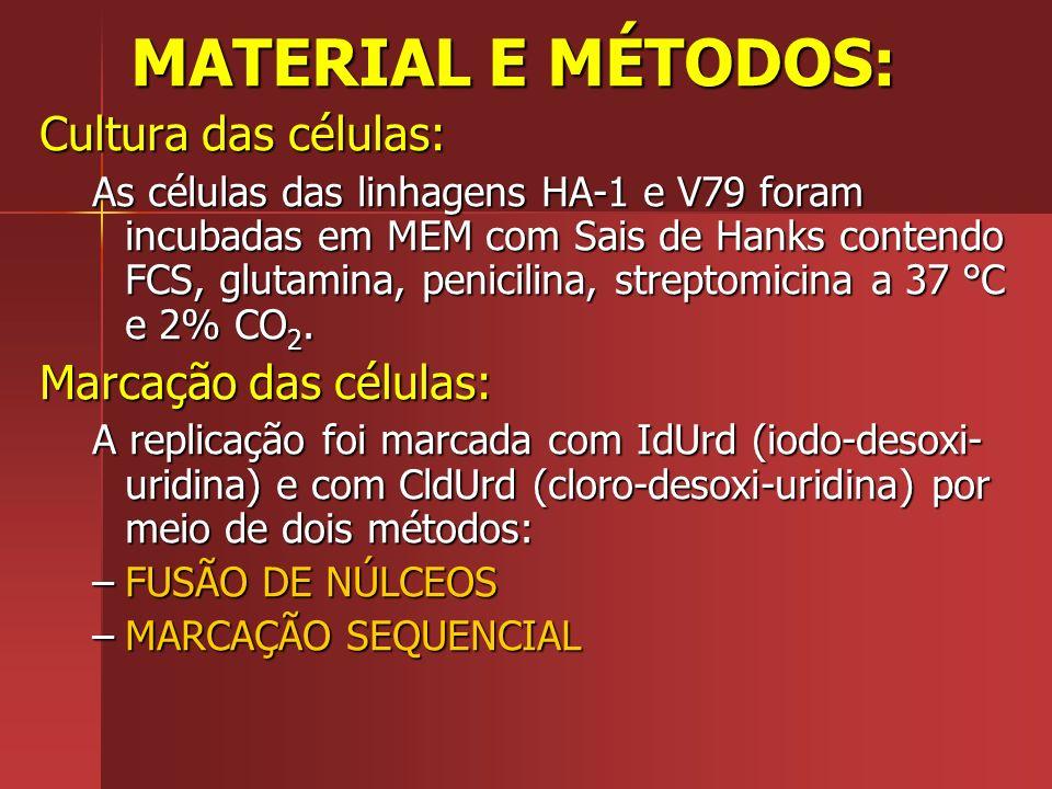 MATERIAL E MÉTODOS: Cultura das células: As células das linhagens HA-1 e V79 foram incubadas em MEM com Sais de Hanks contendo FCS, glutamina, penicil