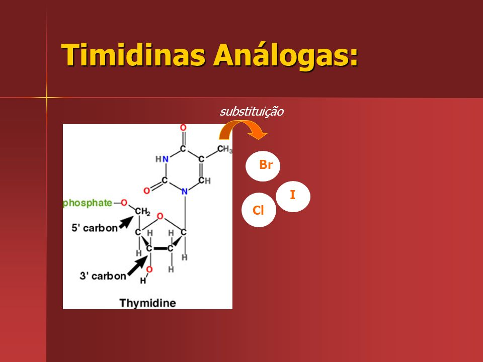 Timidinas Análogas: Br Cl I substituição