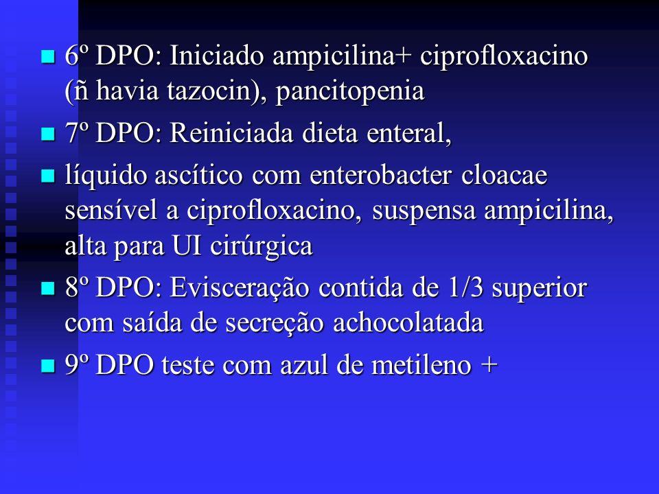 6º DPO: Iniciado ampicilina+ ciprofloxacino (ñ havia tazocin), pancitopenia 6º DPO: Iniciado ampicilina+ ciprofloxacino (ñ havia tazocin), pancitopeni