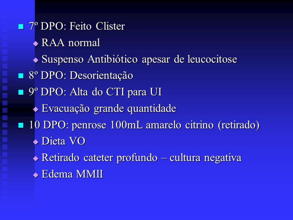 7º DPO: Feito Clister 7º DPO: Feito Clister RAA normal RAA normal Suspenso Antibiótico apesar de leucocitose Suspenso Antibiótico apesar de leucocitos