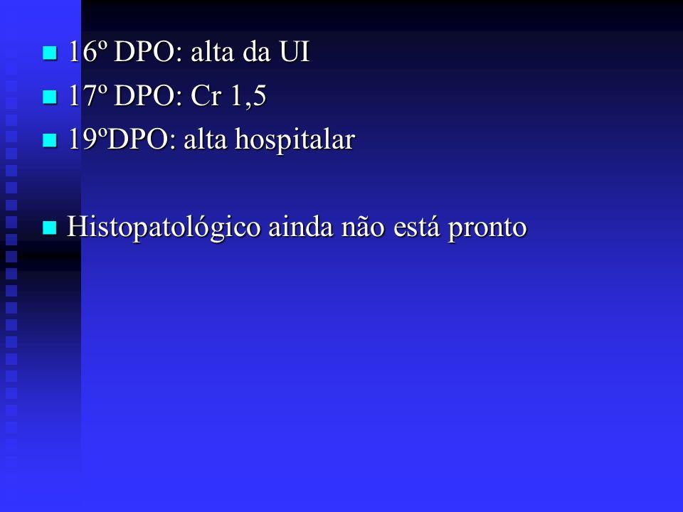 16º DPO: alta da UI 16º DPO: alta da UI 17º DPO: Cr 1,5 17º DPO: Cr 1,5 19ºDPO: alta hospitalar 19ºDPO: alta hospitalar Histopatológico ainda não está