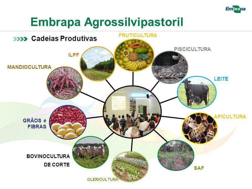 Embrapa Agrossilvipastoril Cadeias Produtivas GRÃOS e FIBRAS LEITE iLPF FRUTICULTURA APICULTURA PISCICULTURA MANDIOCULTURA BOVINOCULTURA DE CORTE OLERICULTURA SAF