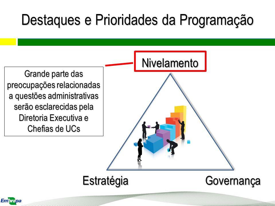 Nivelamento EstratégiaGovernança Grande parte das preocupações relacionadas a questões administrativas serão esclarecidas pela Diretoria Executiva e C
