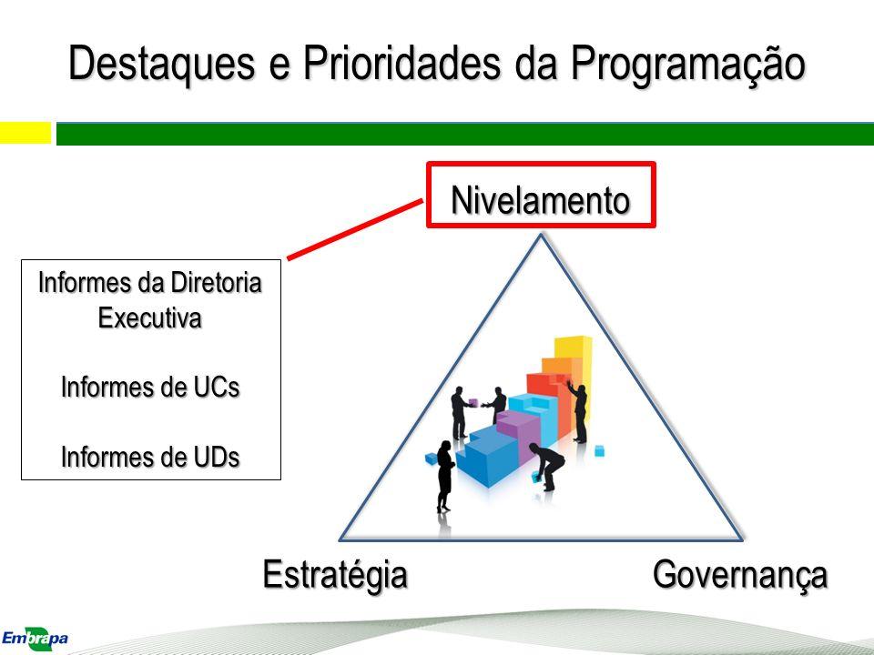 Nivelamento EstratégiaGovernança Grande parte das preocupações relacionadas a questões administrativas serão esclarecidas pela Diretoria Executiva e Chefias de UCs Destaques e Prioridades da Programação