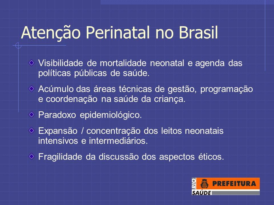 Atenção Perinatal no Brasil Visibilidade de mortalidade neonatal e agenda das políticas públicas de saúde.
