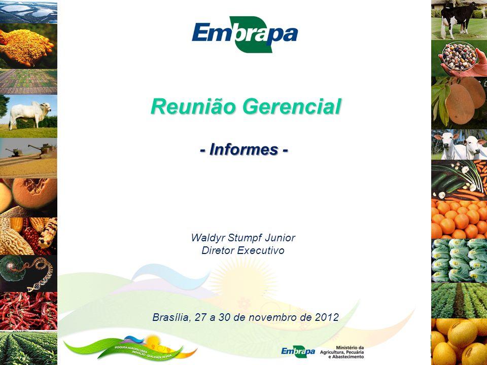 Reunião Gerencial Waldyr Stumpf Junior Diretor Executivo Brasília, 27 a 30 de novembro de 2012 - Informes -