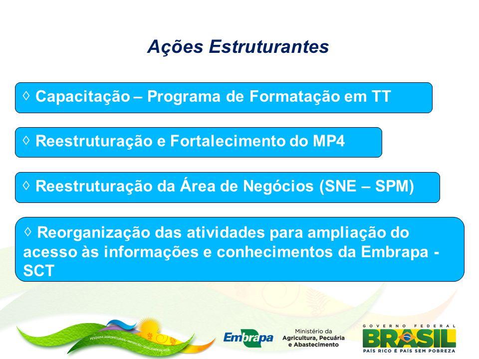 Ações Estruturantes Capacitação – Programa de Formatação em TT Reestruturação e Fortalecimento do MP4 Reestruturação da Área de Negócios (SNE – SPM) R