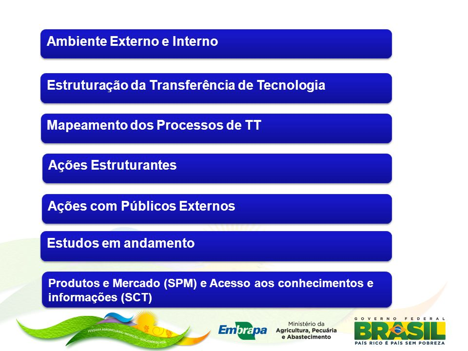 Mapeamento dos Processos de TT Ações Estruturantes Estruturação da Transferência de Tecnologia Estudos em andamento Ações com Públicos Externos Produt