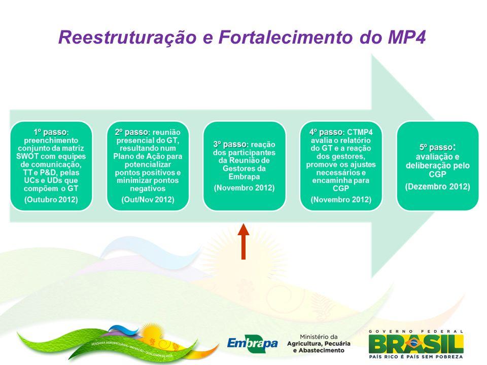 Reestruturação e Fortalecimento do MP4