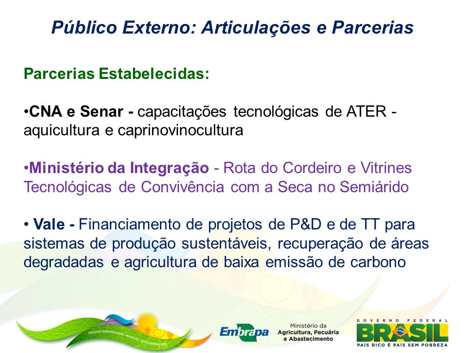 Público Externo: Articulações e Parcerias Parcerias Estabelecidas: CNA e Senar - capacitações tecnológicas de ATER - aquicultura e caprinovinocultura