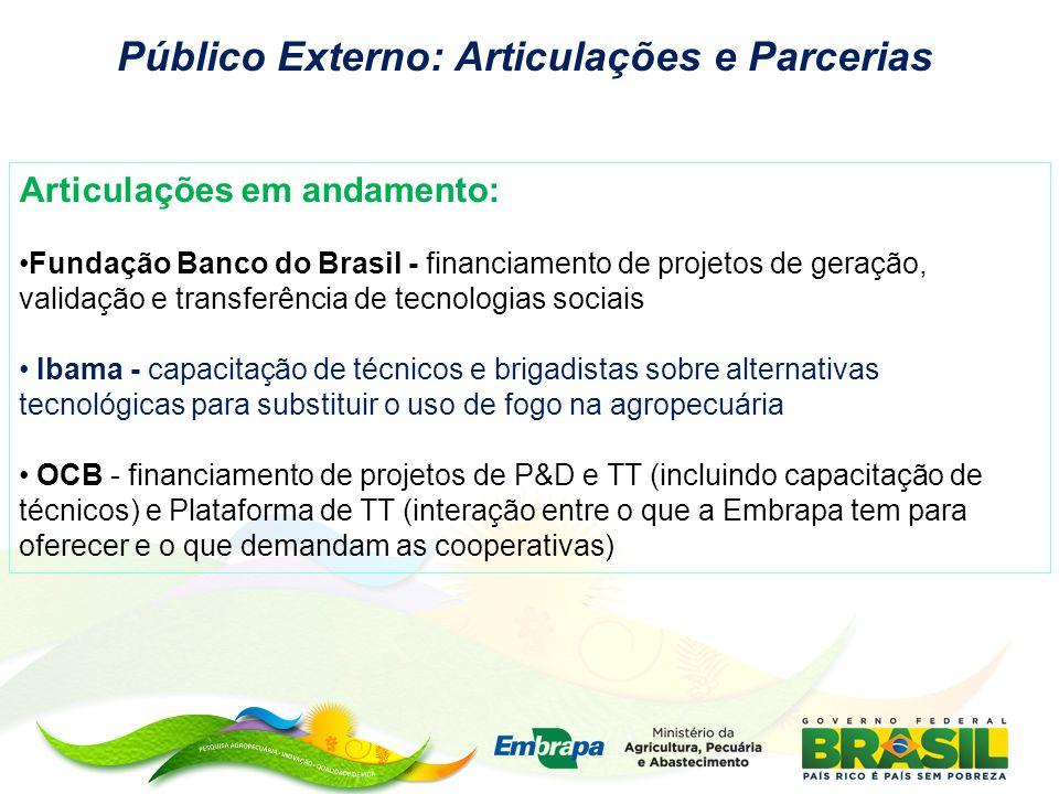 Público Externo: Articulações e Parcerias Articulações em andamento: Fundação Banco do Brasil - financiamento de projetos de geração, validação e tran