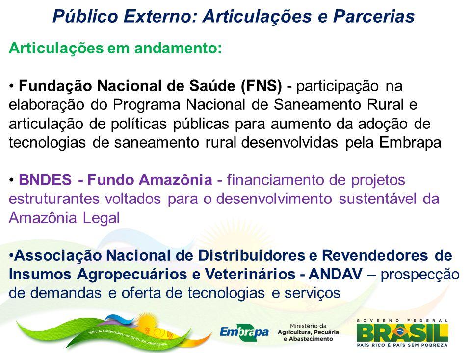 Público Externo: Articulações e Parcerias Articulações em andamento: Fundação Nacional de Saúde (FNS) - participação na elaboração do Programa Naciona
