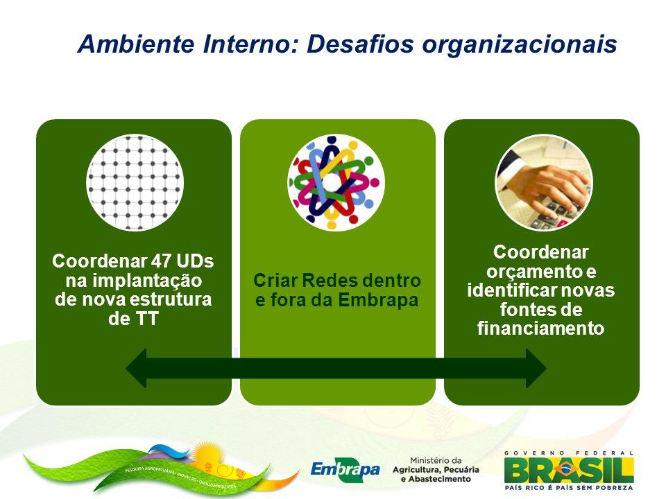 Ambiente Interno: Desafios organizacionais