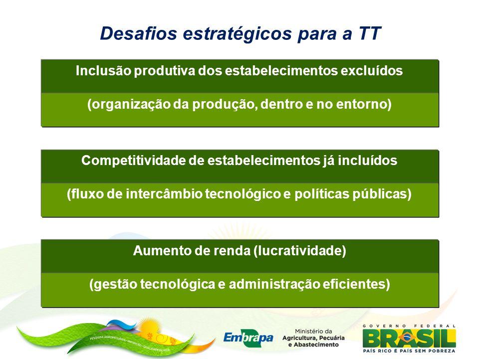 Inclusão produtiva dos estabelecimentos excluídos (organização da produção, dentro e no entorno) Competitividade de estabelecimentos já incluídos (flu