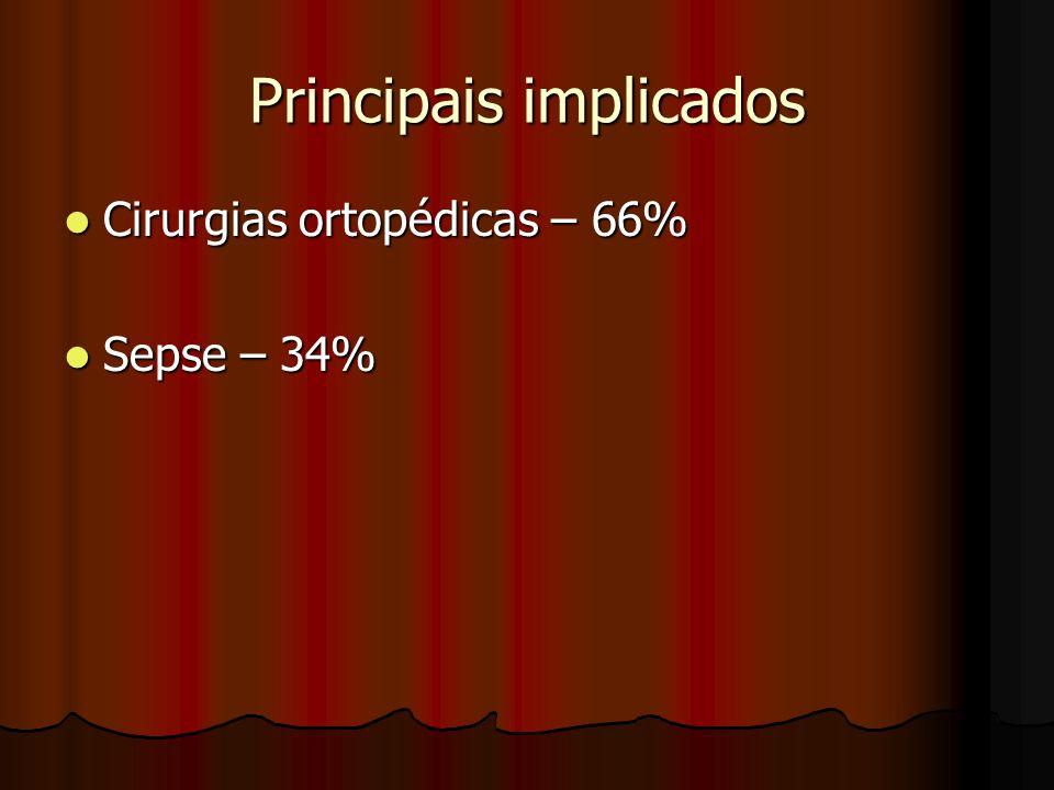 Principais implicados Cirurgias ortopédicas – 66% Cirurgias ortopédicas – 66% Sepse – 34% Sepse – 34%