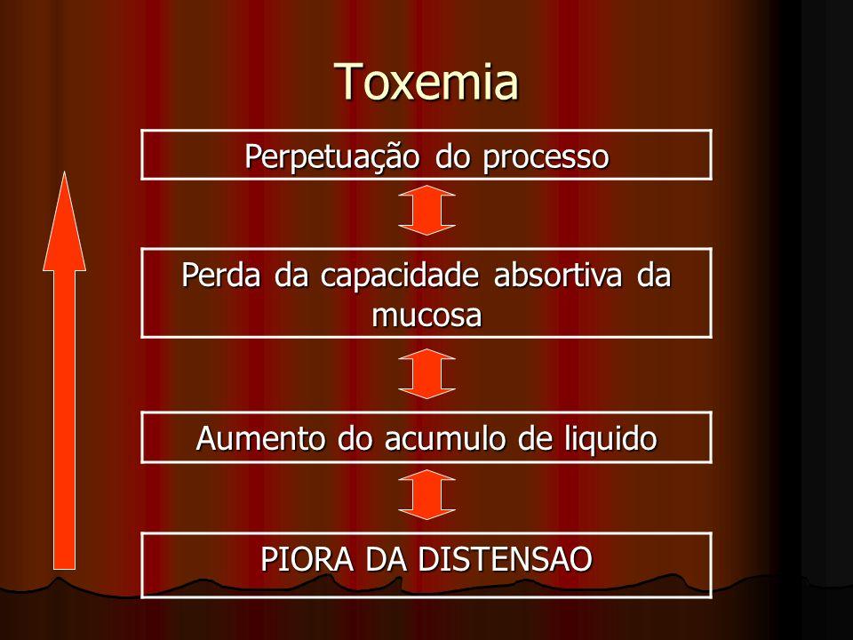 Perpetuação do processo Perda da capacidade absortiva da mucosa Aumento do acumulo de liquido PIORA DA DISTENSAO Toxemia