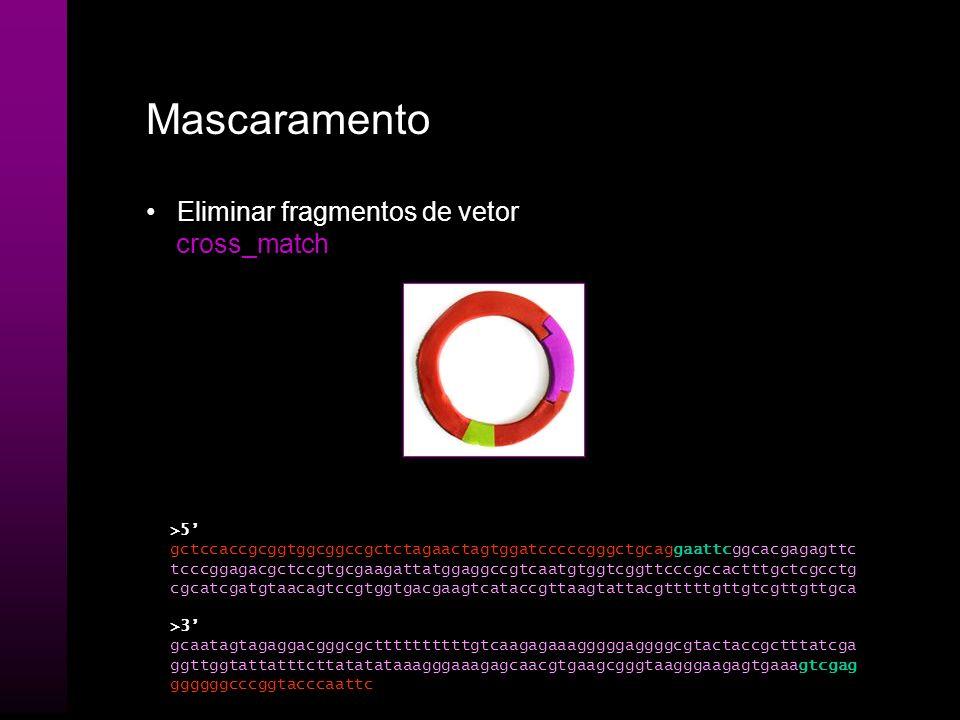 Base-calling Geração de uma seqüência de nucleotídeos através da análise dos chromatogramas PHRED gaattcggcacgagagttctcccggagacgctccgtgcgaagattatggagg