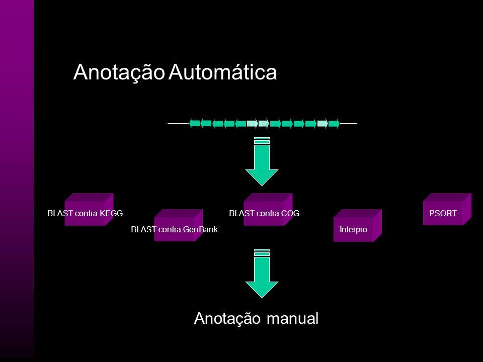 Anotação Automática Glimmer contig RBSfindertRNAscanGeneMark CDS