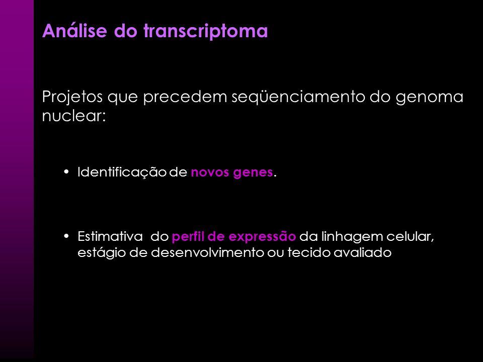 Sabiá System for Automated Bacterial Integrated Annotation LNCC – Coordenação do Projeto Genoma Brasileiro Gerenciamento de todos softwares de Base-ca