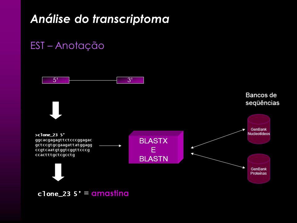 Transcrição e Transcriptoma EST Remoção Sequencia de vetor (cross_match, Lucy) Remoção Poli A (Script Perl) EST 5 Poli A 3 Vetor Poli A X X X 53 53