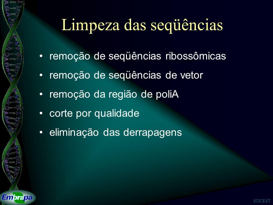 SUCEST Limpeza das seqüências remoção de seqüências ribossômicas remoção de seqüências de vetor remoção da região de poliA corte por qualidade eliminação das derrapagens