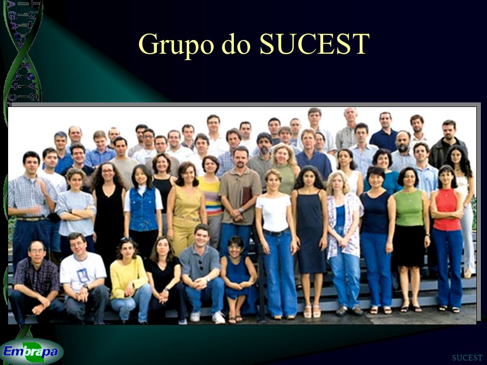 SUCEST Grupo do SUCEST