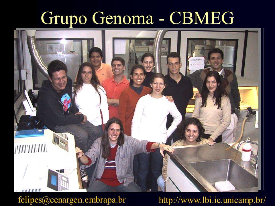 felipes@cenargen.embrapa.br http://www.lbi.ic.unicamp.br/