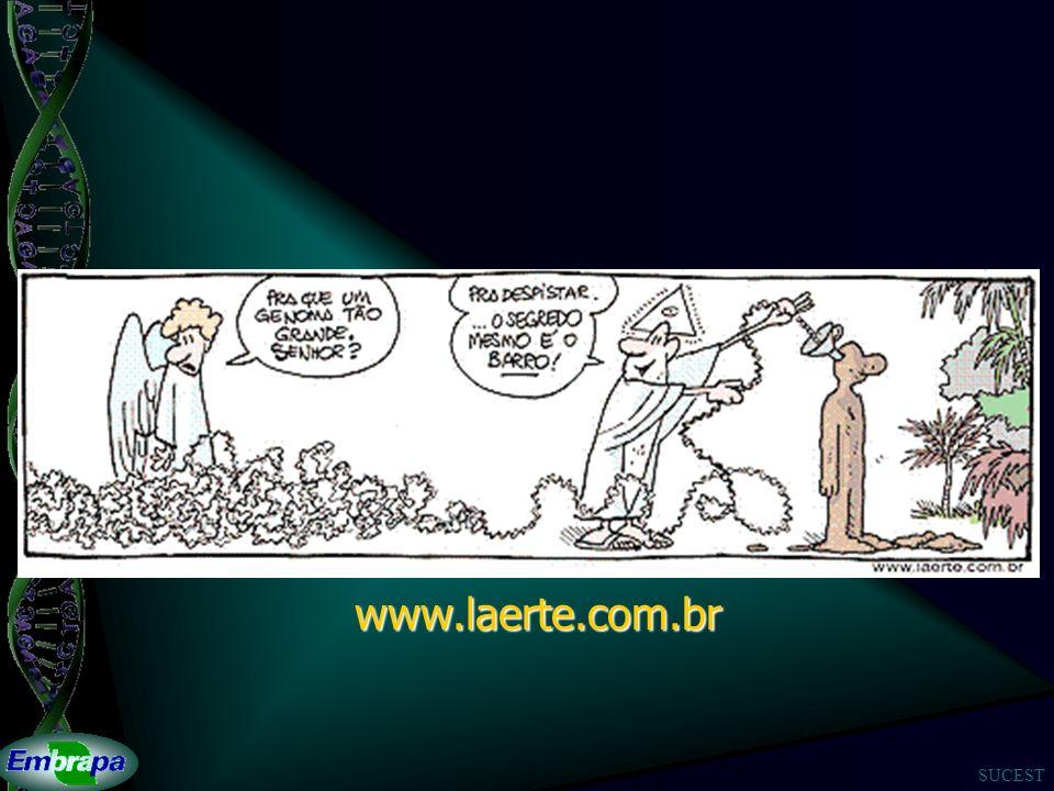 SUCEST www.laerte.com.br