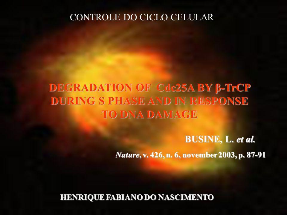 Introdução: Cdc25A fosfatase é essencial para a progressão do ciclo celular por causa de sua função de desfosforilar cdks (B/cdc2).