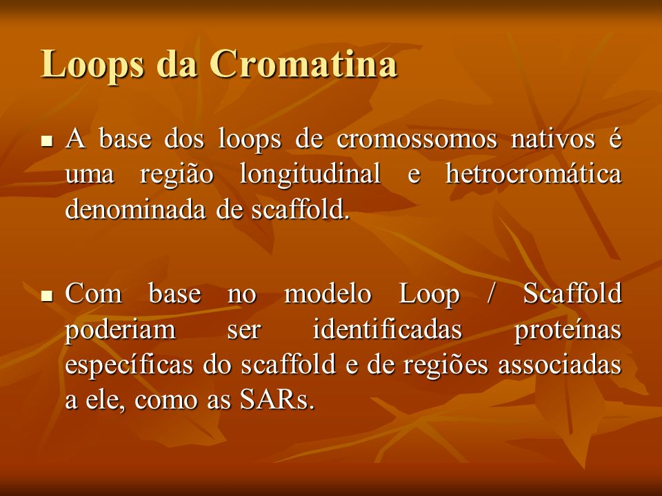 Topoisomerase II e SARs A SC1 (scaffold 1)é a principal proteína do scaffold e foi identificada como uma topoisomerase II.