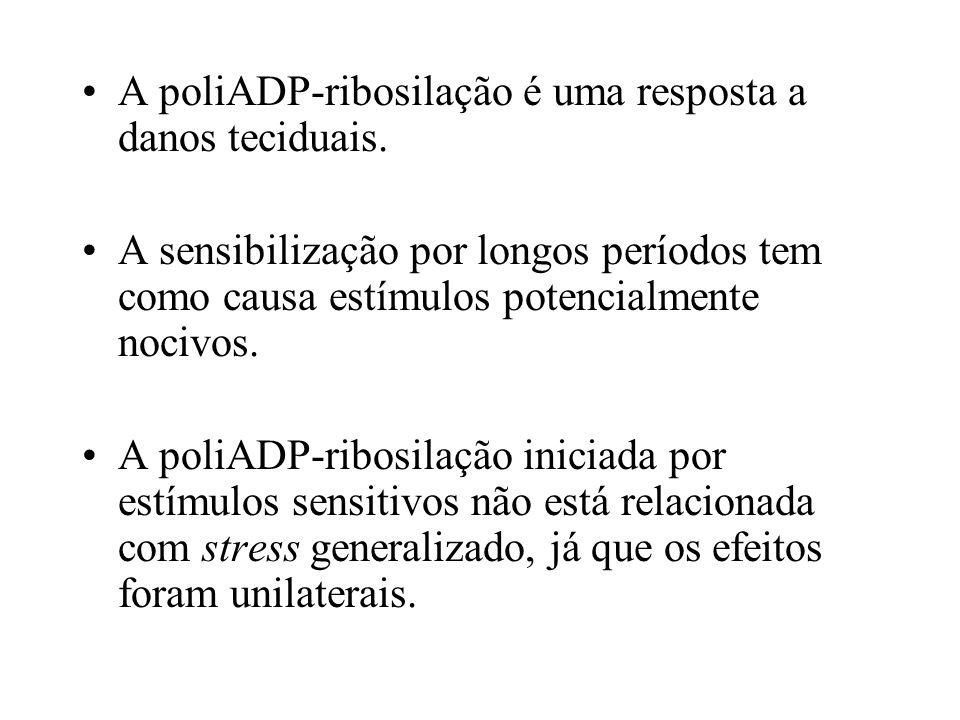 A poliADP-ribosilação é uma resposta a danos teciduais. A sensibilização por longos períodos tem como causa estímulos potencialmente nocivos. A poliAD