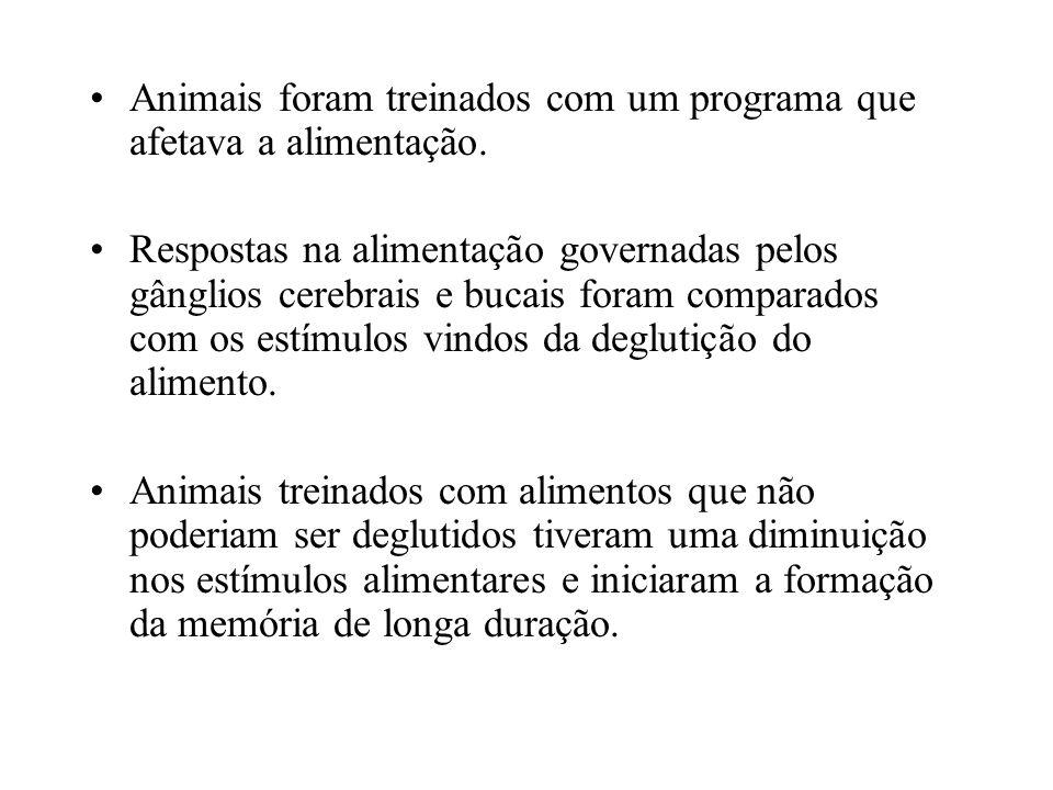 Animais foram treinados com um programa que afetava a alimentação. Respostas na alimentação governadas pelos gânglios cerebrais e bucais foram compara
