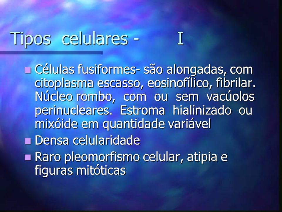 Tipos celulares - I Células fusiformes- são alongadas, com citoplasma escasso, eosinofílico, fibrilar.