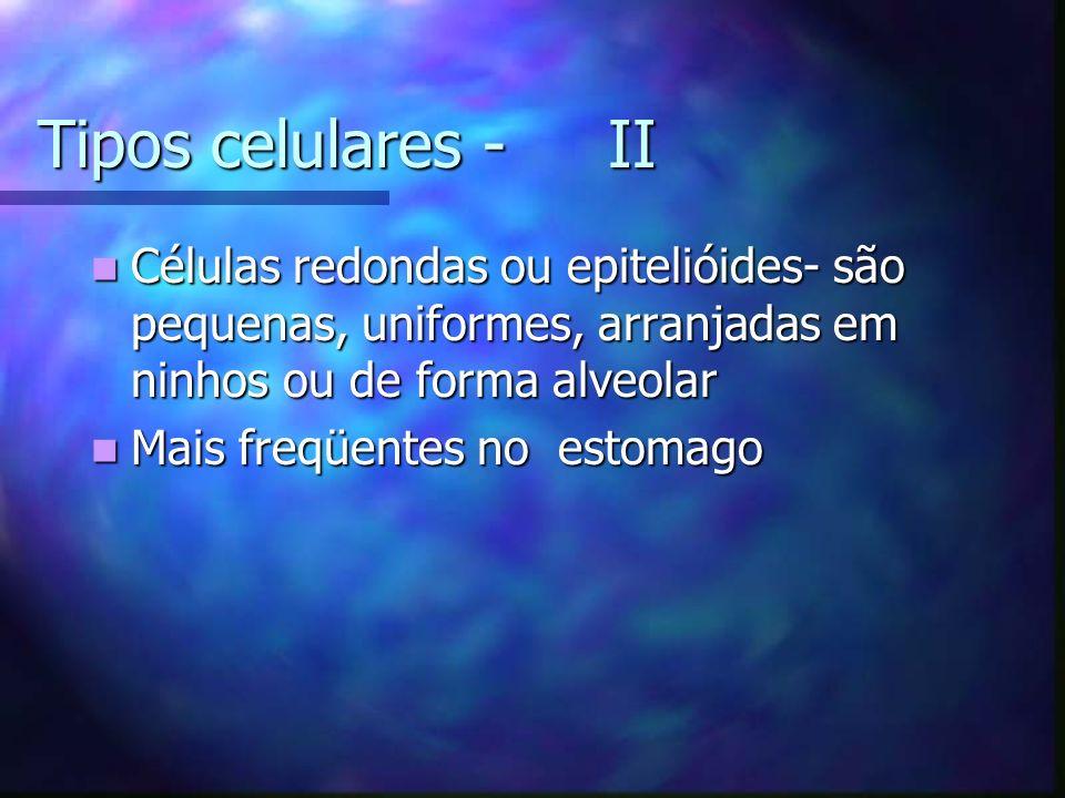 Tipos celulares - II Células redondas ou epitelióides- são pequenas, uniformes, arranjadas em ninhos ou de forma alveolar Células redondas ou epitelióides- são pequenas, uniformes, arranjadas em ninhos ou de forma alveolar Mais freqüentes no estomago Mais freqüentes no estomago