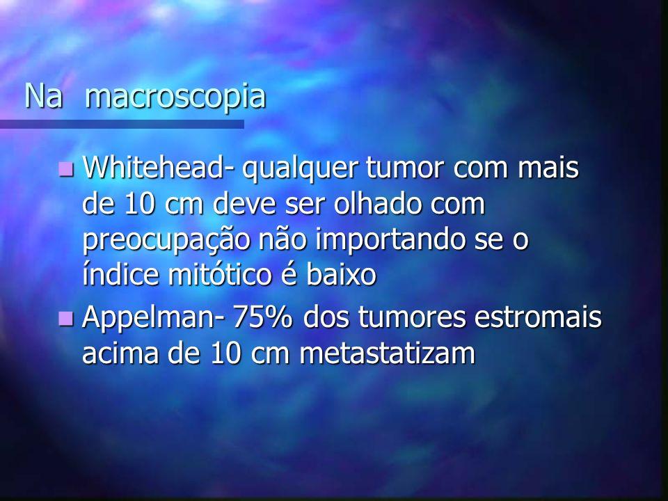Na macroscopia Whitehead- qualquer tumor com mais de 10 cm deve ser olhado com preocupação não importando se o índice mitótico é baixo Whitehead- qualquer tumor com mais de 10 cm deve ser olhado com preocupação não importando se o índice mitótico é baixo Appelman- 75% dos tumores estromais acima de 10 cm metastatizam Appelman- 75% dos tumores estromais acima de 10 cm metastatizam