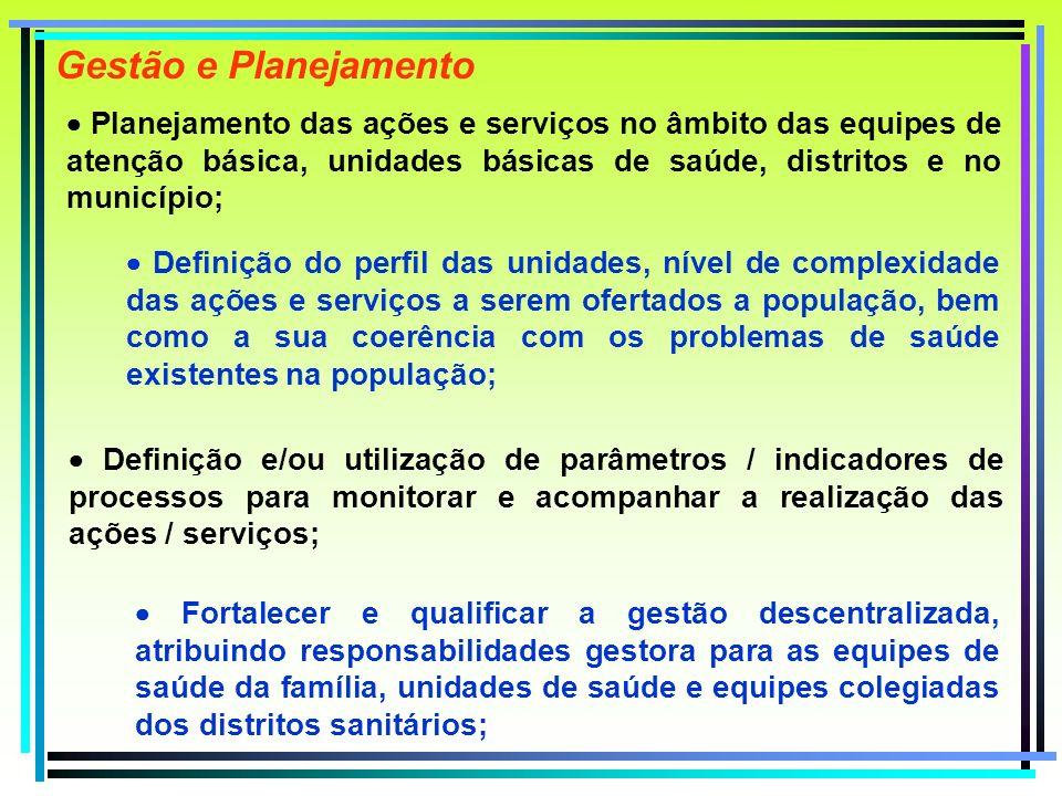 Planejamento das ações e serviços no âmbito das equipes de atenção básica, unidades básicas de saúde, distritos e no município; Gestão e Planejamento