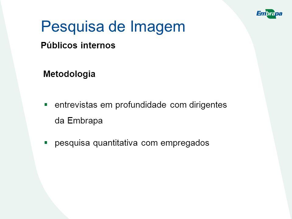 Públicos internos entrevistas em profundidade com dirigentes da Embrapa pesquisa quantitativa com empregados Metodologia Pesquisa de Imagem