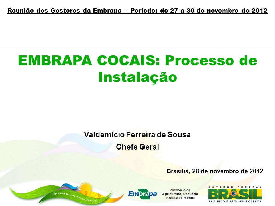 Valdemício Ferreira de Sousa Chefe Geral Brasília, 28 de novembro de 2012 EMBRAPA COCAIS: Processo de Instalação Reunião dos Gestores da Embrapa - Per